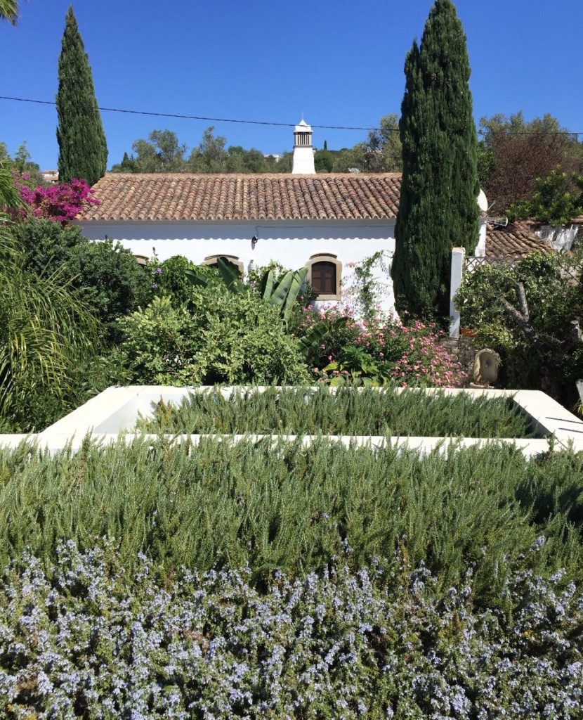 green roof Portugal